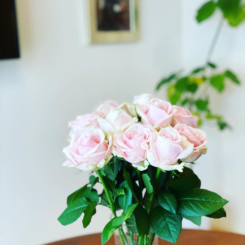 薔薇の花言葉は…